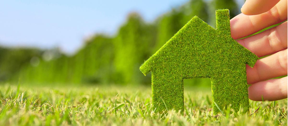 eco friendly - Politique environnementale